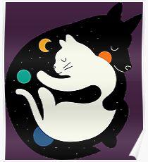 Hugs Katzenbär Liebesfreunde Poster