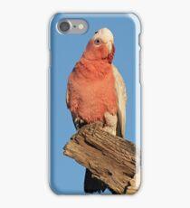 Galah iPhone Case/Skin