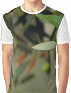 Olives On A Branch Graphic T-Shirt