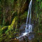 Waterfall in Parc Dudley by Geoff Carpenter