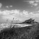 Bamburgh Castle Northumberland Coast by Nigel Tinlin