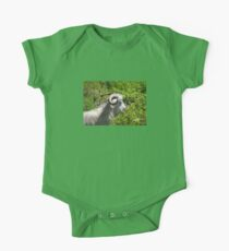 Side View of A Billy Goat Grazing One Piece - Short Sleeve