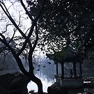 Westlake, Hangzhou, China by Simone Maynard