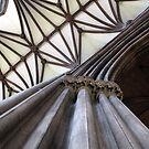 Nave Column and Vaults by John Dalkin