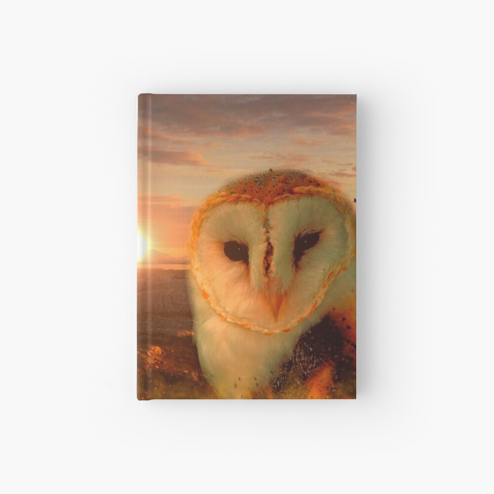 Eulenseele Notizbuch
