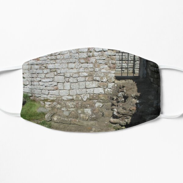 Merch #103 -- Rocks And Bricks - Shot 10 (Hadrian's Wall) Mask