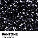 Pantone - schwarze Glitterseele von gracieallen95