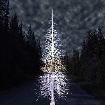 The Woods by SarahJane221B