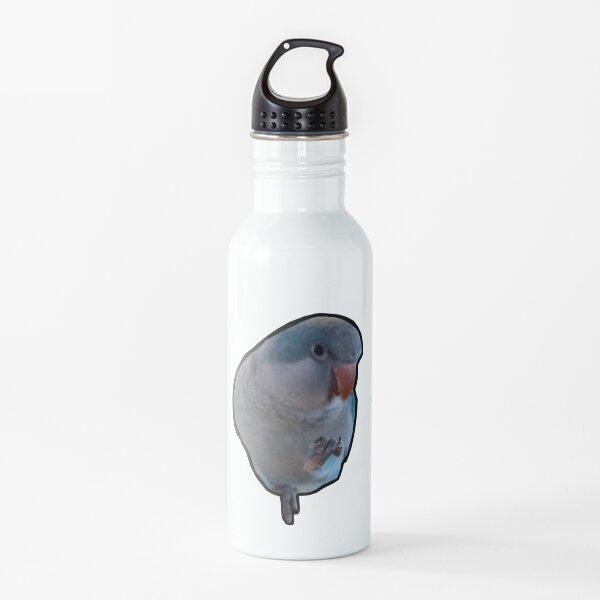 Blue Quaker Parrot Water Bottle