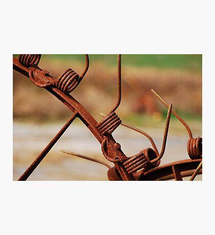 Rusty Tines Photographic Print