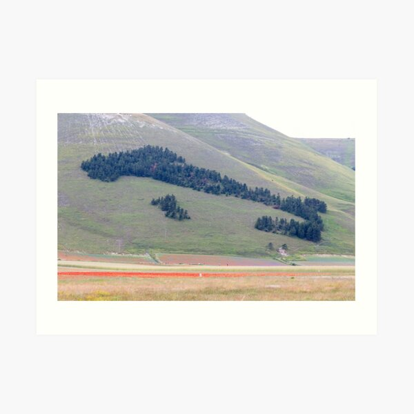 Italy of trees in Norcia valley Art Print
