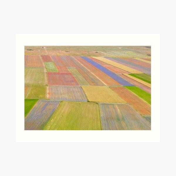 Fields on color of Castelluccio Art Print