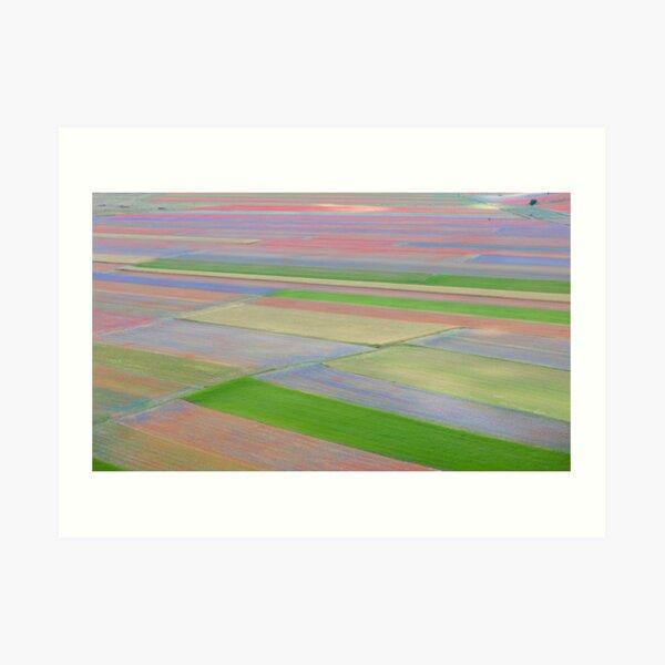 The colored fields of Castelluccio Art Print