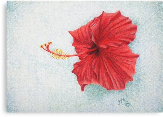 """""""Red Hibiscus"""" by TheWolfDaughter"""