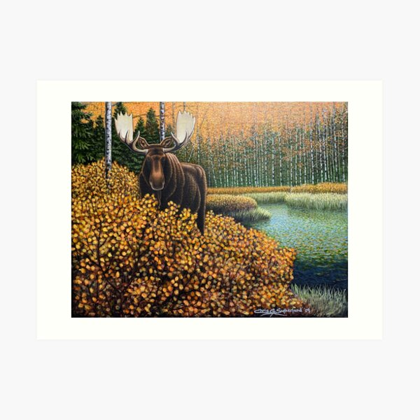 Moose in the Willows Art Print