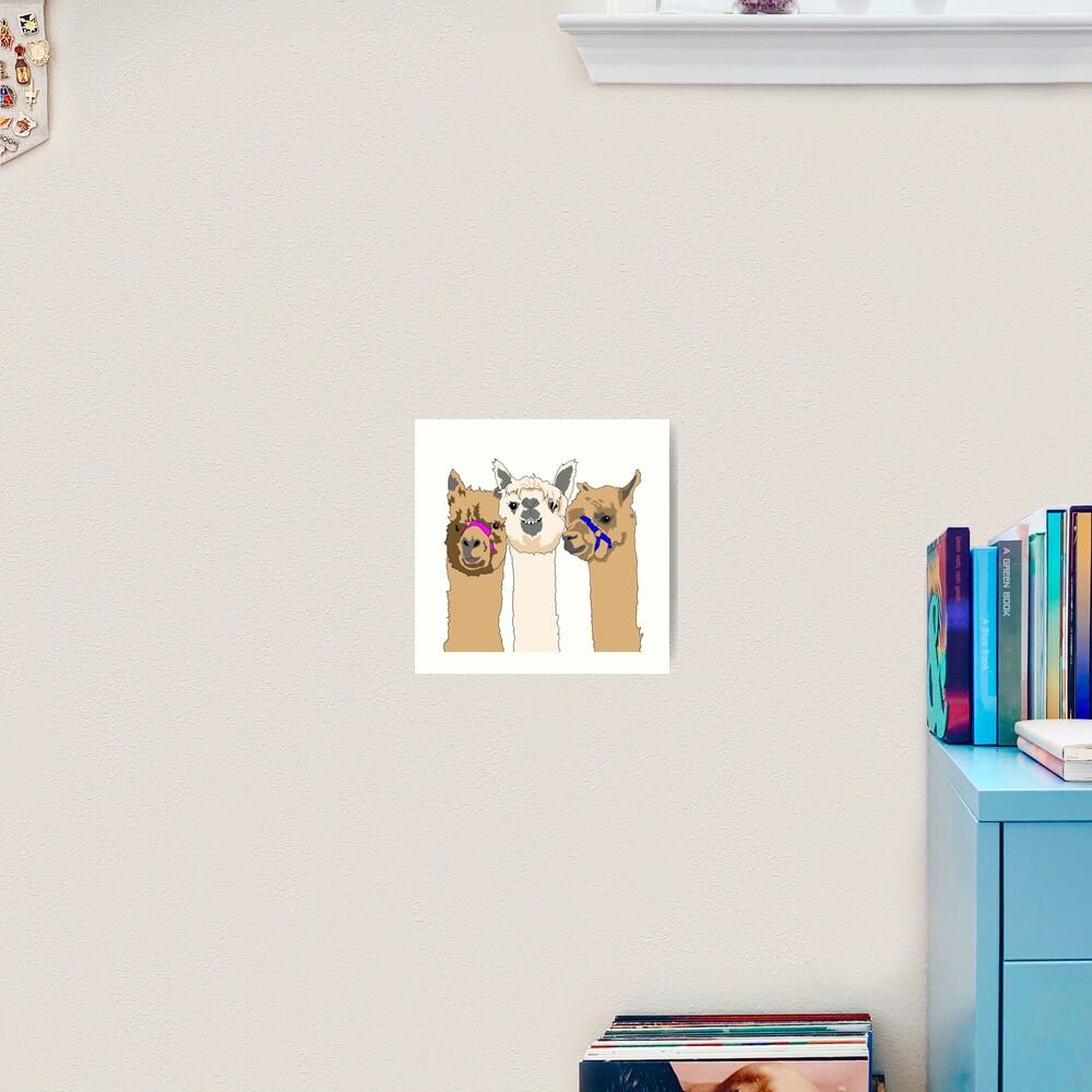 Three Alpacas Art Print