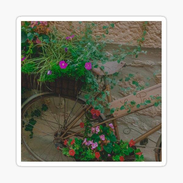 Plantes à vélo Sticker