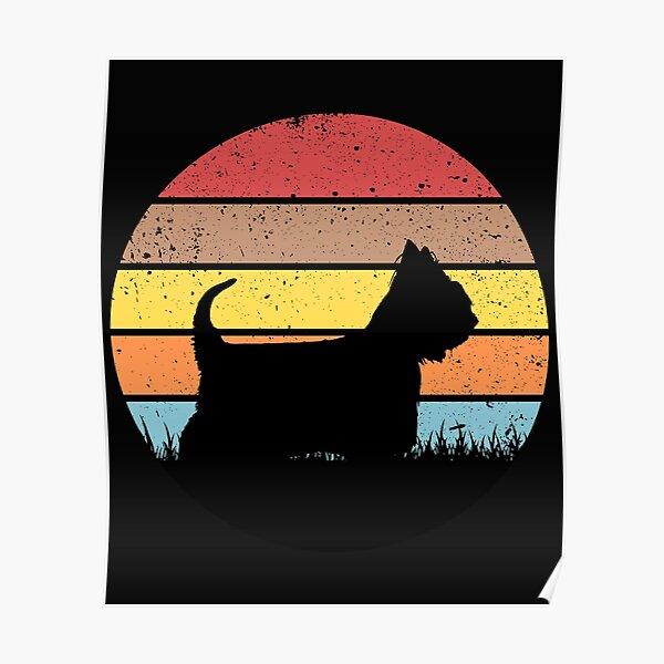 Australian Silky Terrier Poster