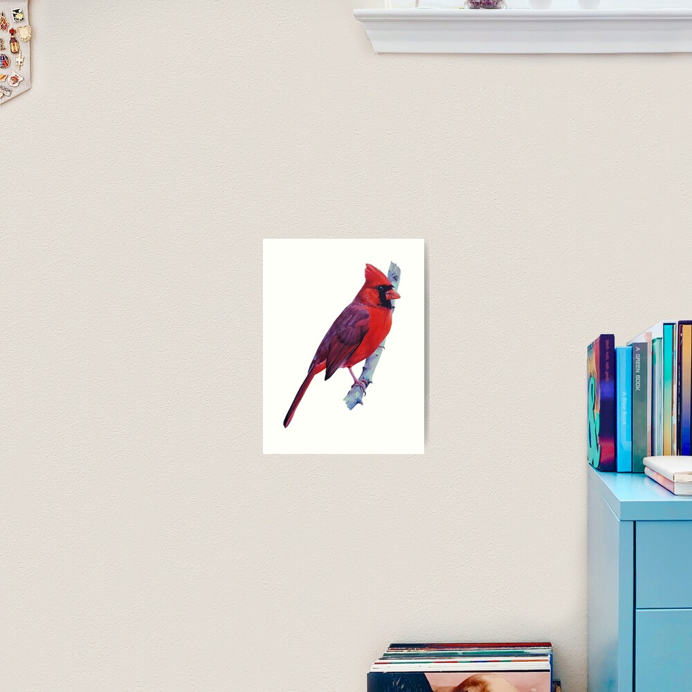 Northern Cardinal (no background) Art Print