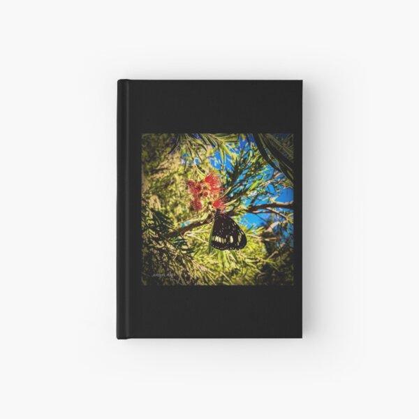 Butterfly on Callistemon  Hardcover Journal