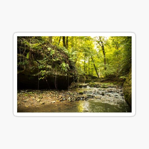 River in forest Sticker