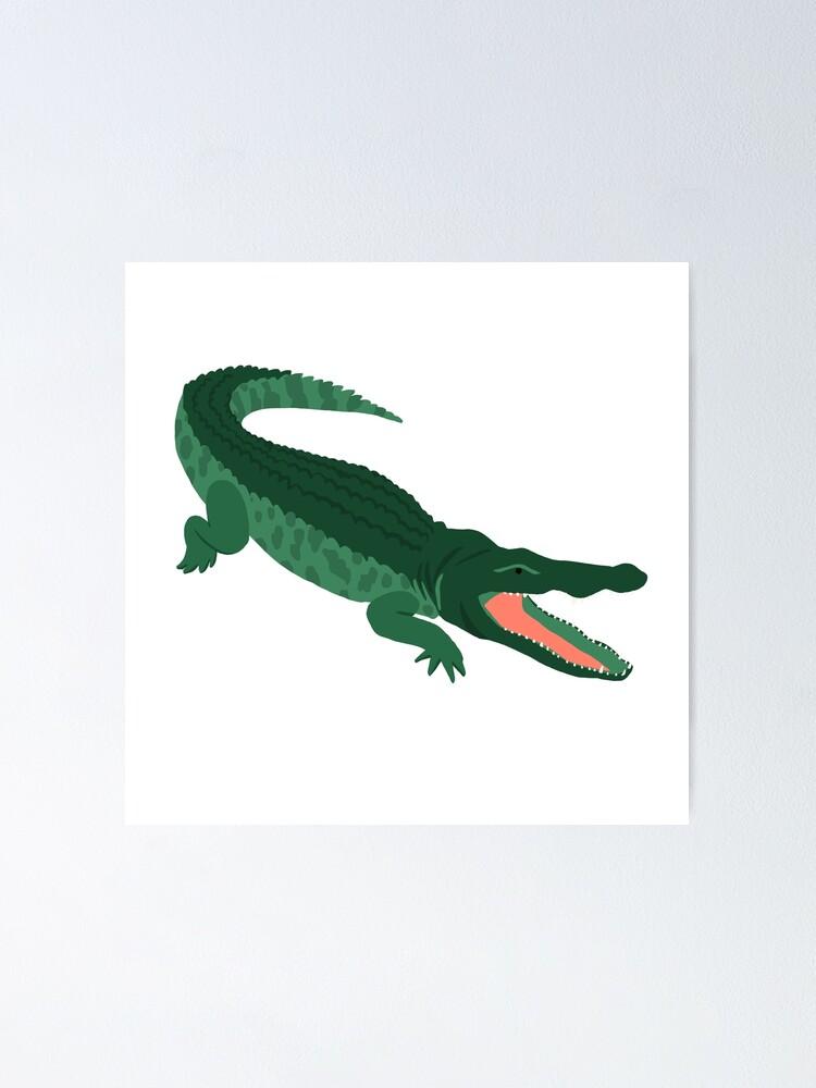 Alternate view of Aligator Poster