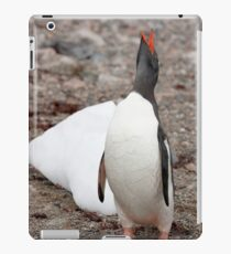 Gentoo Penguin ~ A cry for HELP ....... My world is melting iPad Case/Skin