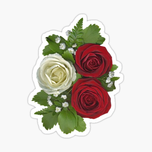 White and Red Roses Sticker