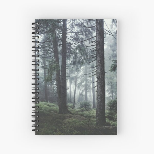 Path Vibes Spiral Notebook