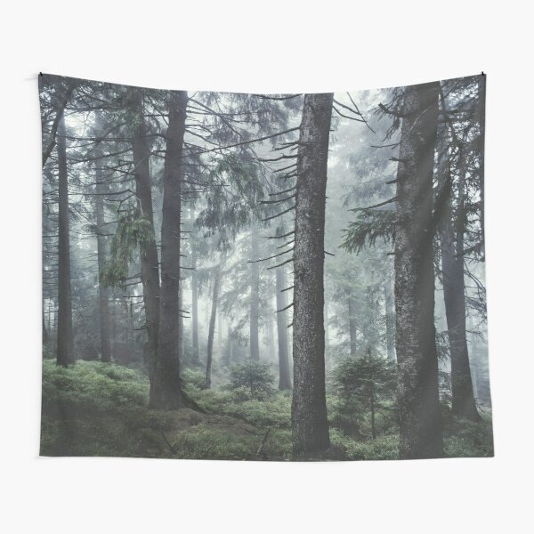 Path Vibes Tapestry