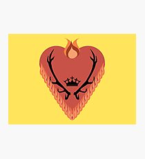 Game of Thrones - House Baratheon of Dragonstone Photographic Print