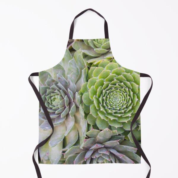 Potted Succulents Apron
