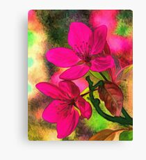 Flowers pink rosa orange Canvas Print