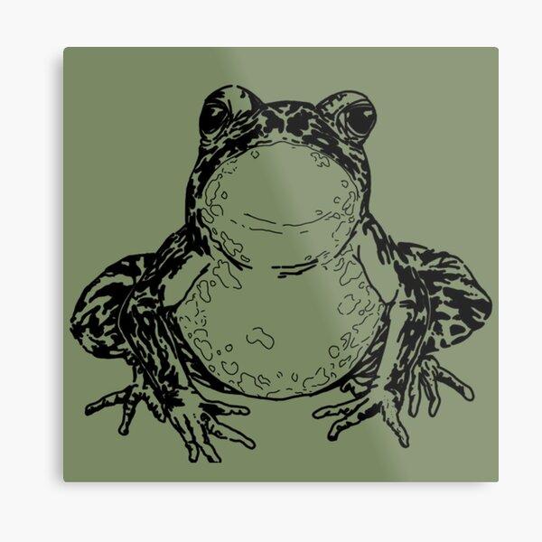 American Bullfrog Black and White Metal Print