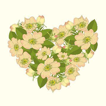 Wild rose flowers in a heart shape by Netopir