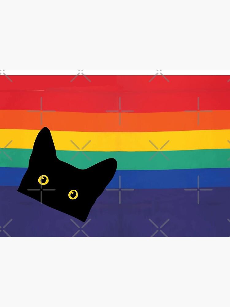 Peeking Cat in Rainbow Circle by beardsandcats