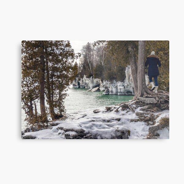 Winter Trails Metal Print