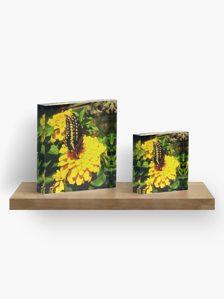 Alternate view of Yellow butterfly by Yannis Lobaina Acrylic Block
