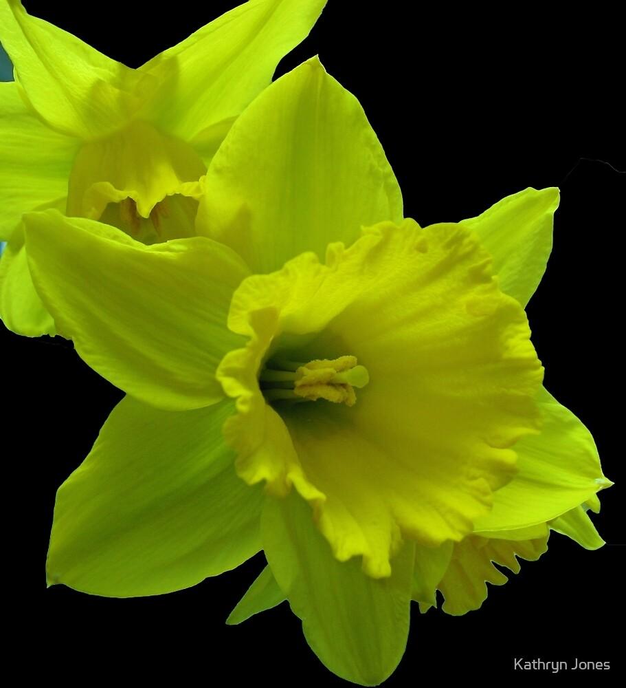 Daffodils Rejoicing by Kathryn Jones