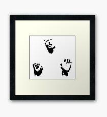 Han Framed Print