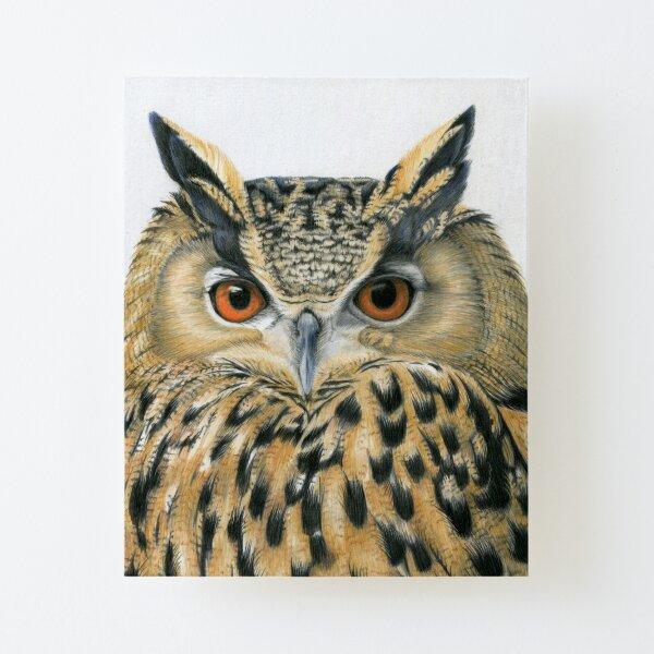 Eagle Owl Canvas Mounted Print