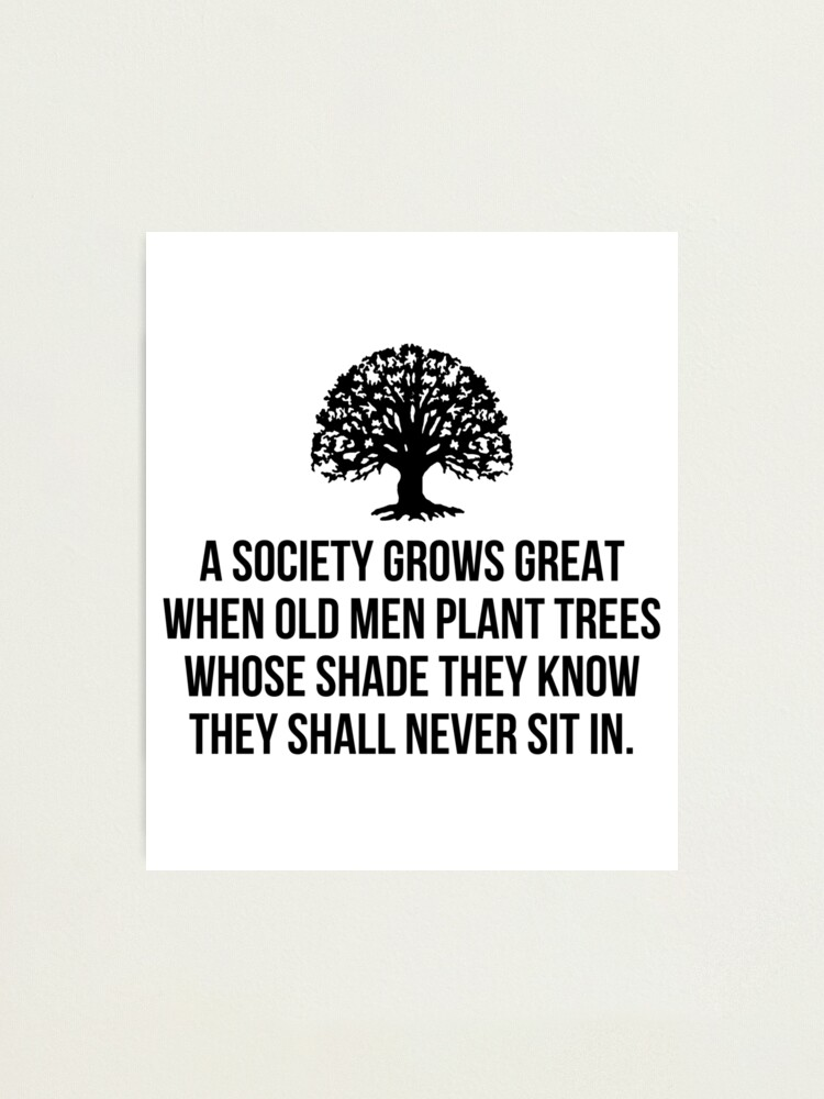 Alternate view of A society grows great when old men plant trees whose shade they know they shall never sit in Photographic Print