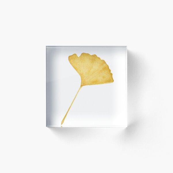 Yellow Gingko Leaf Acrylic Block
