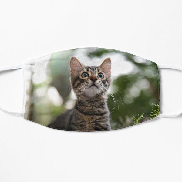 Amgad the wonderer cat Flat Mask