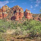 Red Rock Country - Sedona - Arizona - USA by TonyCrehan