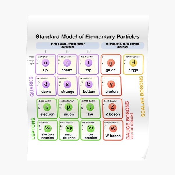 Physics - Standard Model of Elementary Particles - Physicist Poster