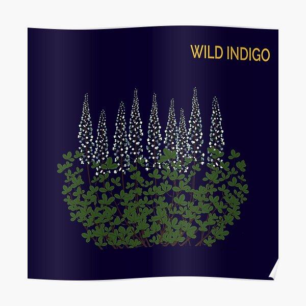 Wild Indigo on indigo Poster