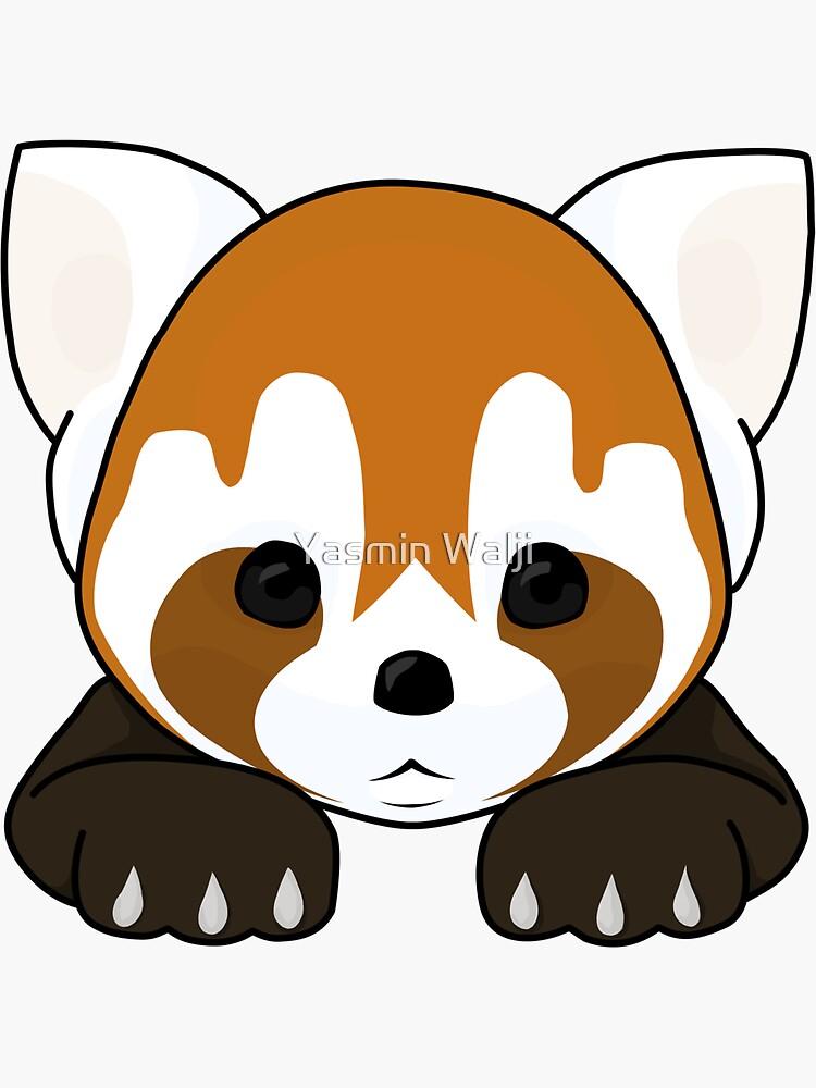 Lesser Panda / Red Panda by YasminWalji