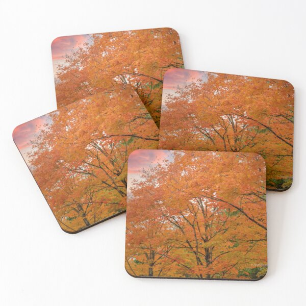Fall Scene in Renton, WA 001 Coasters (Set of 4)