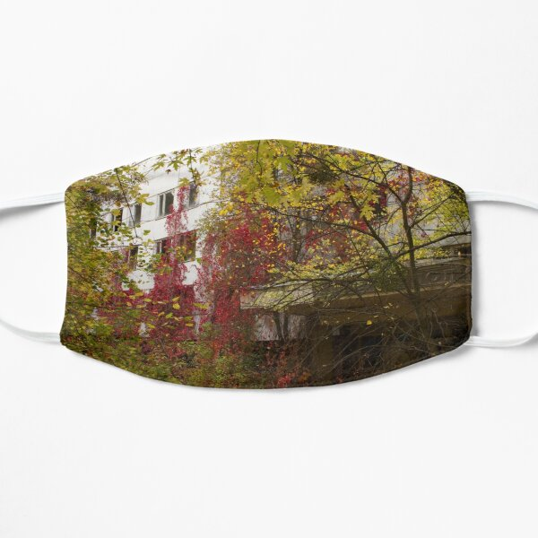 Overgrown Abandoned Apartment Covered In Yellow, Red And Green Leaves Is Being Consumed By The Local Flora Mask